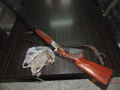 شکارچی غیر مجاز کبک در رودبار دستگیر شد