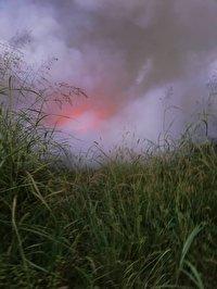 ۷ هکتار از نیزارهای تالاب انزلی سوخت/ مهار آتش سوزی