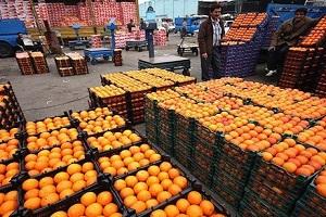 واردات پرتقال برای تنظیم بازار شب عید