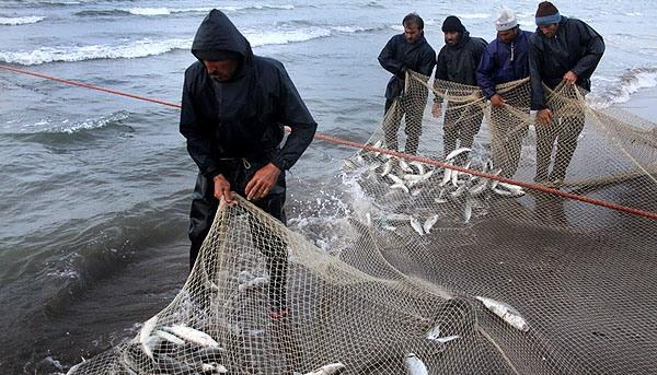 ممنوع بودن صید ماهی در دریای خزر