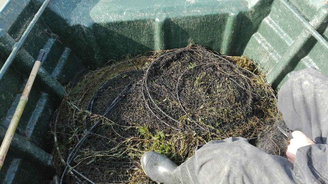 کشف و ضبط ادوات صید غیرمجاز در بندر انزلی