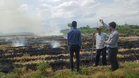 گشت و کنترل یگان حفاظت محیط زیست گیلان و برخورد با متخلفین در خصوص سوزندان پسماندهای کشاورزی