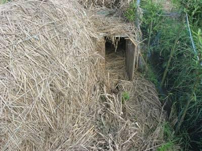 پایش عرصه های طبیعی و مزارع شکارگاهی در رودسر
