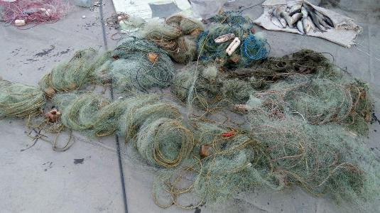 جمع آوری ۲۰ رشته تور ماهیگیری پشت سد منجیل
